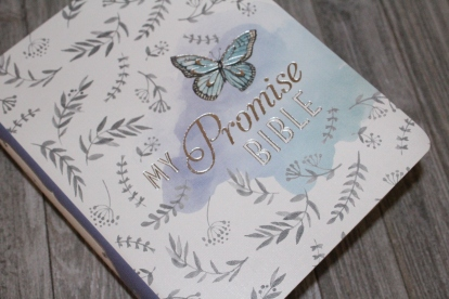 My Promise Bible 2